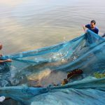 Fishery intervention in Assam and Tripura